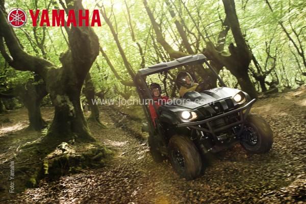 Yamaha Rhino YXR 700 SE (Special Edition)