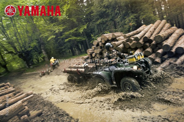 Yamaha Grizzly YFM 550